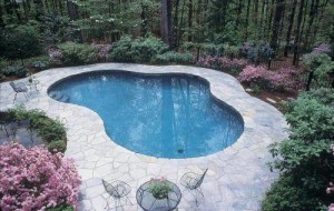 Dove Gray Irregular Flagstone Pool Deck