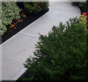 Nice and Simple Concrete Pathway