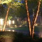 lighting_05_lg