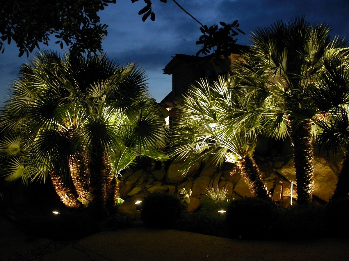 Residential lighting st louis outdoor lighting by frisella for Landscape tree lighting